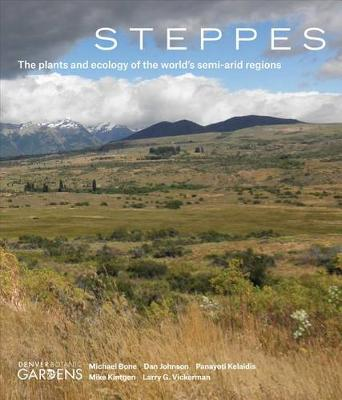 Steppes by Michael Bone