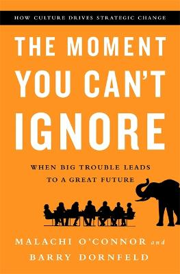 Moment You Can't Ignore by Barry Dornfeld
