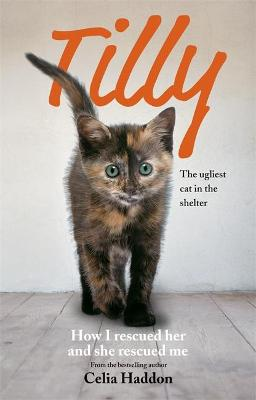 Tilly: The Ugliest Cat by Celia Haddon