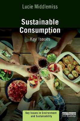 Sustainable Consumption book