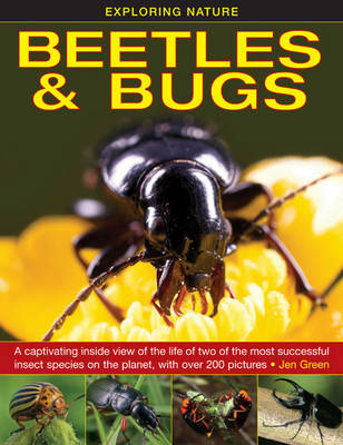 Exploring Nature: Beetles & Bugs by Jen Green