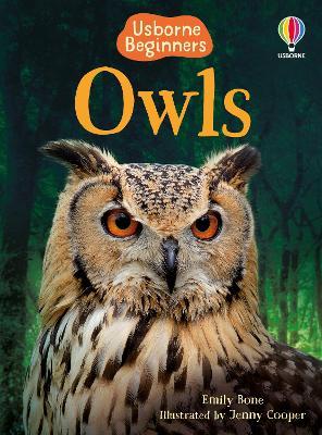 BEG Owls by Emily Bone
