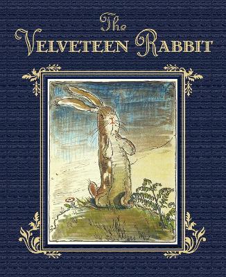 Velveteen Rabbit book