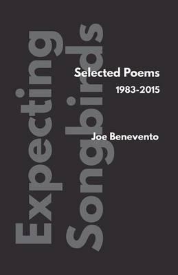 Expecting Songbirds by Joe Benevento