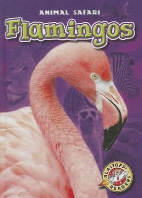 Flamingos by Megan Borgert-Spaniol