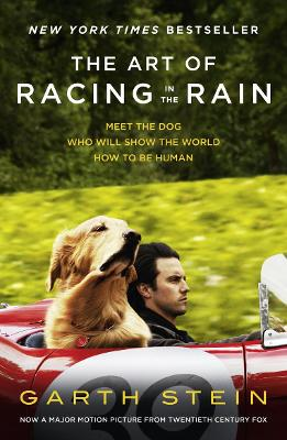 The The Art of Racing in the Rain by Garth Stein