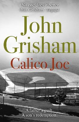 Calico Joe book