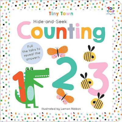 Hide-and-Seek Counting by Joshua George
