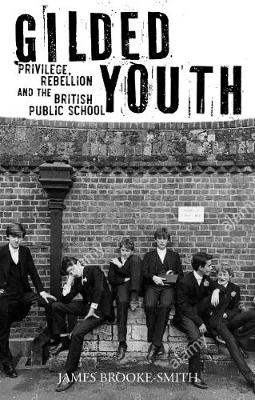 Gilded Youth: Privilege, Rebellion and the British Public School by James Smith