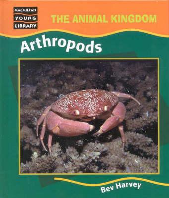 Arthropods -Animal Kingdom by HARVEY