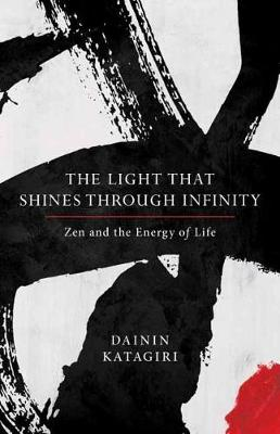 Light That Shines Through Infinity book