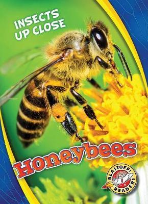 Honeybees by Christina Leaf