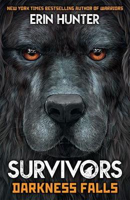 Survivors Book 3: Darkness Falls by Erin Hunter