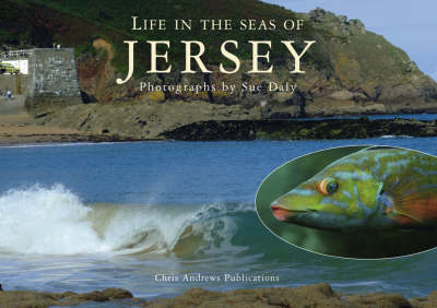 Sealife in Jersey by Chris Andrews