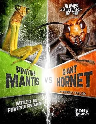 Praying Mantis vs. Giant Hornet by Alicia Z. Klepeis
