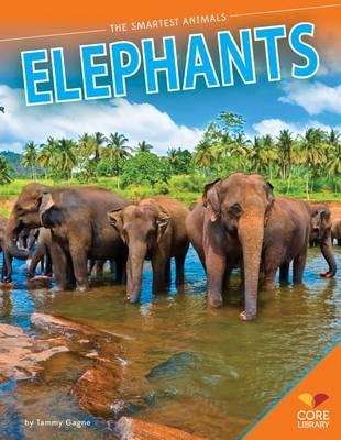 Elephants by Tammy Gagne