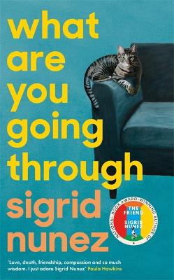 What Are You Going Through: 'A total joy - and laugh-out-loud funny' DEBORAH MOGGACH book