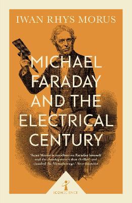 Michael Faraday and the Electrical Century (Icon Science) by Iwan Morus