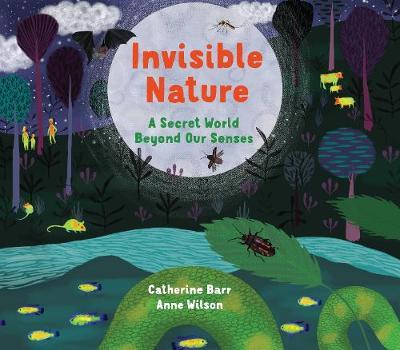 Invisible Nature: A Secret World Beyond our Senses book
