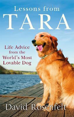 Lessons from Tara by David Rosenfelt