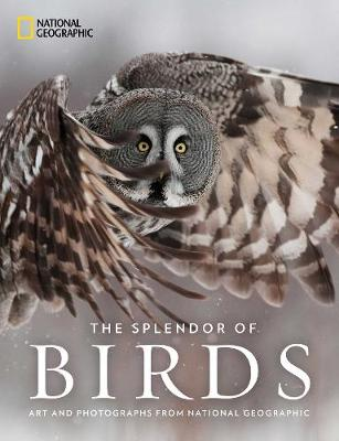 The Splendor of Birds: Art and Photography From National Geographic by National Geographic