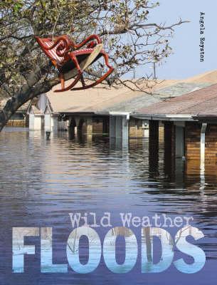 Floods by Angela Royston