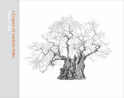 A Legacy of Ancient Oaks by Mark Frith