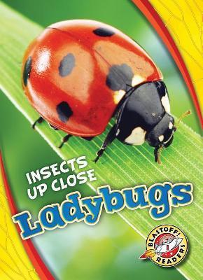 Ladybugs by Christina Leaf