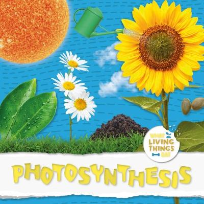 Photosynthesis by Robin Twiddy