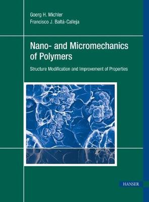 Nano- and Micromechanics of Polymers by Goerg H. Michler