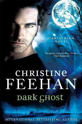 Dark Ghost book