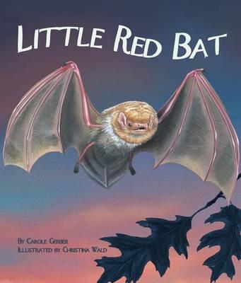 Little Red Bat by Carole Gerber