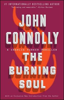 Burning Soul book