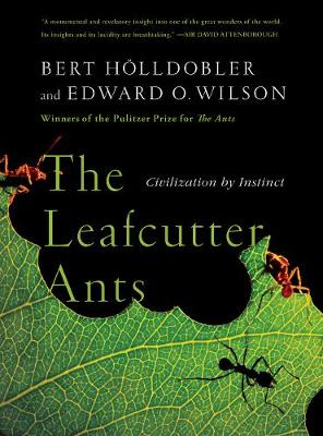 The Leafcutter Ants: Civilization by Instinct by Bert Holldobler