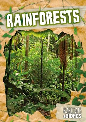 Rainforests by Mike Clark
