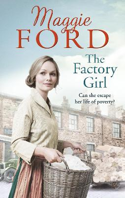 Factory Girl book