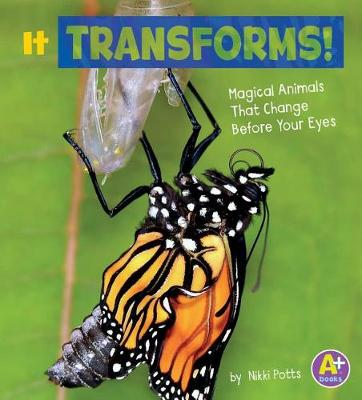 It Transforms! by Nikki Potts