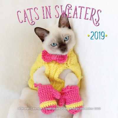 Cats In Sweaters Mini 2019: 16-Month Calendar - September 2018 through December 2019 by Editors of Rock Point