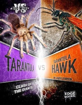 Tarantula vs. Tarantula Hawk by Lindsy O'Brien