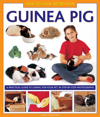 How to Look After Your Guinea Pig by David Alderton