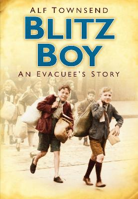 Blitz Boy book