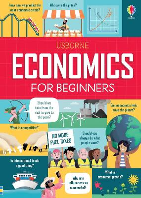 Economics for Beginners book