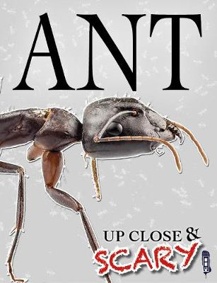 Up Close & Scary Ant by Louise & Richard Spilsbury