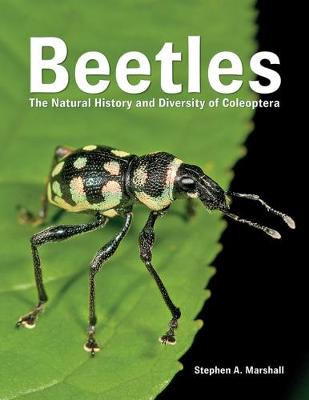Beetles: The Natural History and Diversity of Coleoptera: 2018 by Stephen A. Marshall
