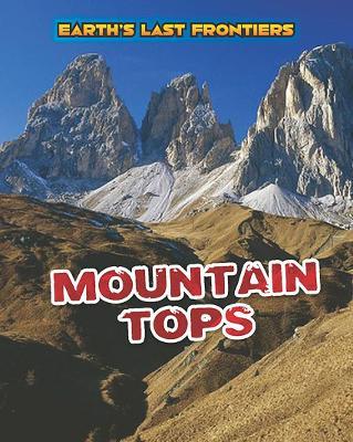 Mountain Tops by Ellen Labrecque