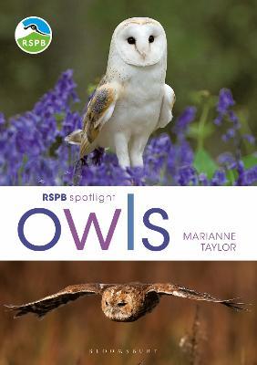 RSPB Spotlight Owls by Marianne Taylor