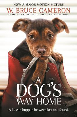 A Dog's Way Home: The Heartwarming Story of the Special Bond Between Man and Dog by W. Bruce Cameron