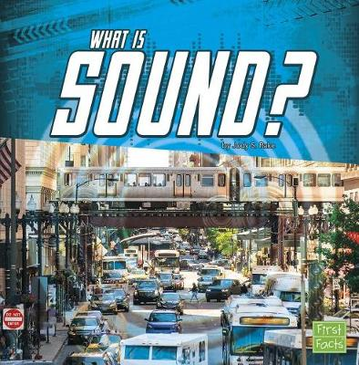 What Is Sound? by Jody S. Rake
