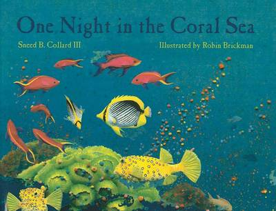 One Night in the Coral Sea by Sneed B. Collard III