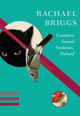 Common Sexual Fantasies, Ruined by Rachael Briggs
